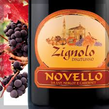 Vino Novello 2019 Zignolo D'Autunno 12% vol. cl. 75